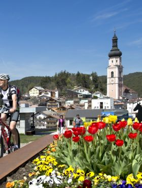 Leisure activities & opportunities in the surroundings of Hotel Alpenflora