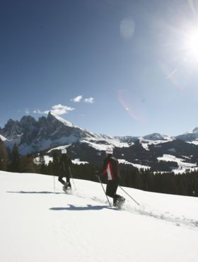 Skiing and natural fun in the Dolomites at Hotel Alpenflora