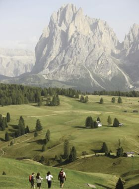 Your Trekking Hotel Alpenflora on the Alpe di Siusi in Castelrotto